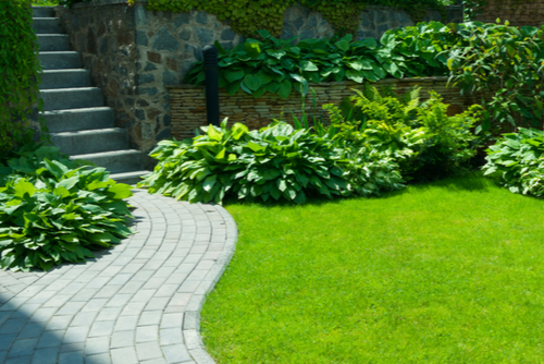 Green garden with varied bushes surround a beautiful lawn, with a curved path on the left leading to a stone staircase.