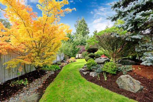 View of colorful trees and decorative trimmed bushes and rocks in a backyard.